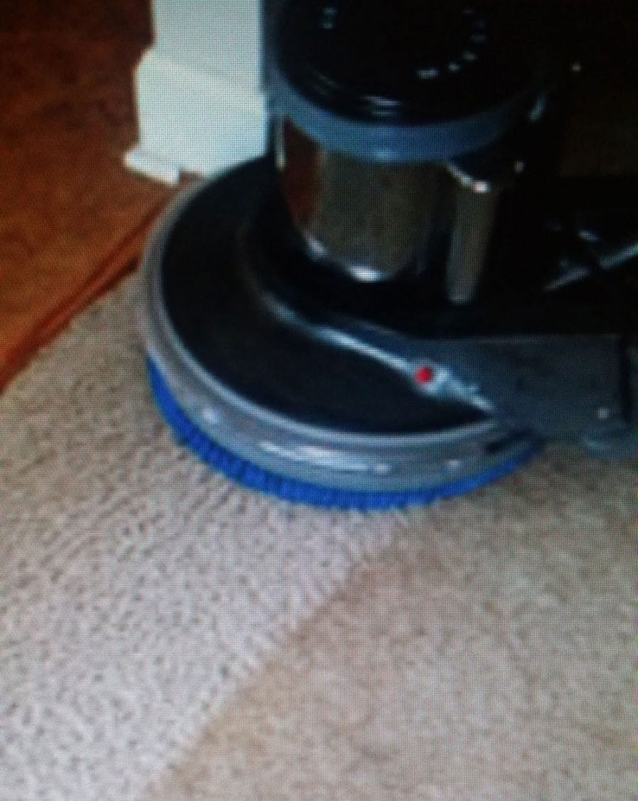 upholstery ultra dry carpet cleaner by ultra dry newcastle carpet cleaning